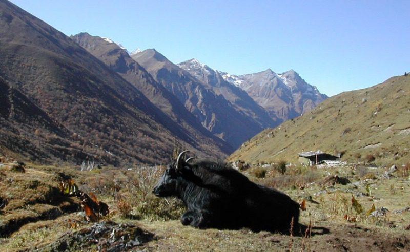 Jangothang Bhutan