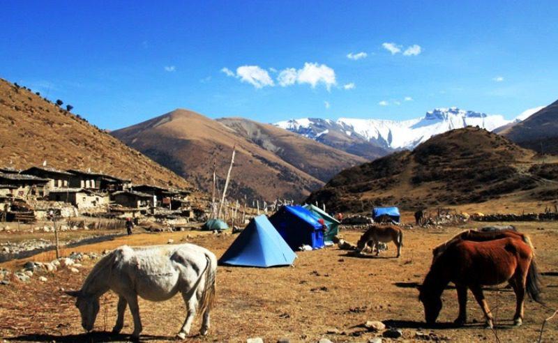 Jomolhari_trek_camp