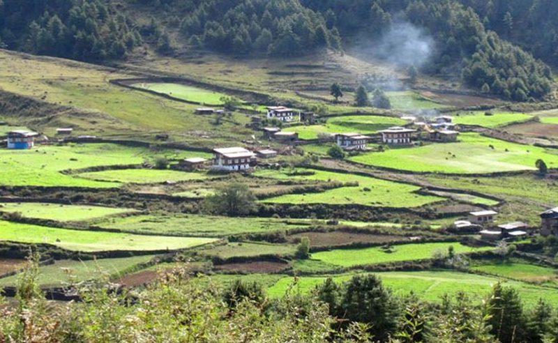 bhutan-gangtey-valley-trek